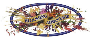 Blooming Advantage