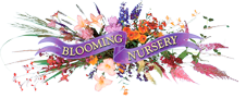 Blooming Nursery, Inc.